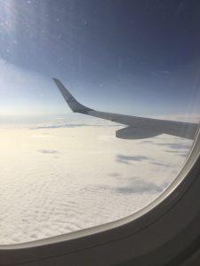 Sulle ali dell'Europa